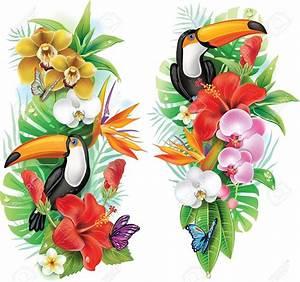 fleurs tropicales toucan et un papillons clip art libres With chambre bébé design avec bouquet fleurs tropicales