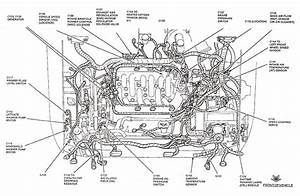 N54 Engine Cooling System Diagram