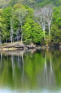 Salt Fork Lake State Park Ohio
