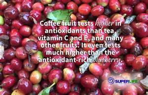 Fruits with High Polyphenols