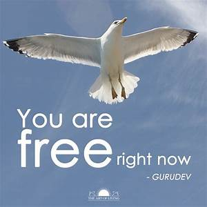 You are free right now. - Jai Gurudev inspiration Quote