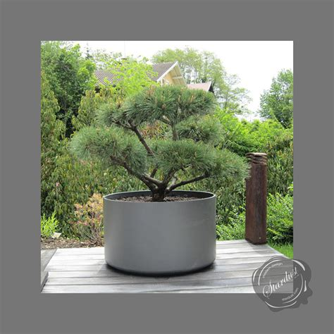 large outdoor planter pot 30 quot diameter stardust