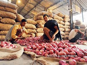 Haryana Govt Will Support Prices of Tomato and Onion Under the