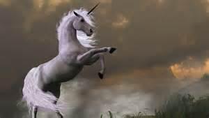 Animal Looks Like a Real Unicorn