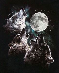 drawings of wolves howling at the moon MEMEs