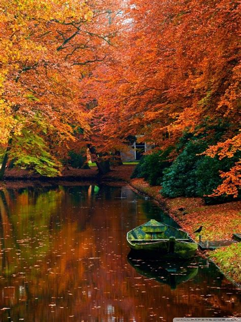 autumn wallpapers  mobile gallery