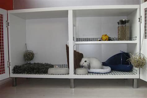 Convert Cupboard Into Indoor Rabbit Hutch