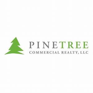 Pin Pine Tree Branch With Snow Facebook Cover Alegri ...