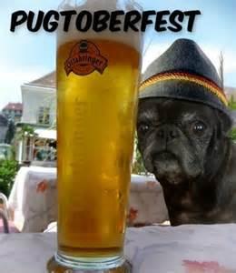 Pug Funny Dog Pun Meme