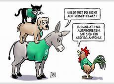 FussballWitze FreitagsWitze