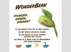 Feel Green WonderBean 'Viel Glück' online kaufen