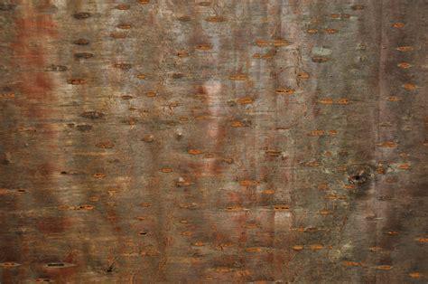 laminate wall covering top 28 laminate wall coverings laminate wall covering plastic ceiling and laminated