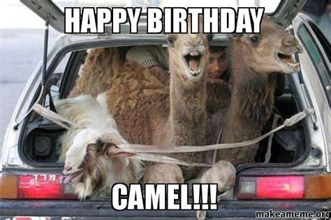Camel Memes - happy birthday camel make a meme