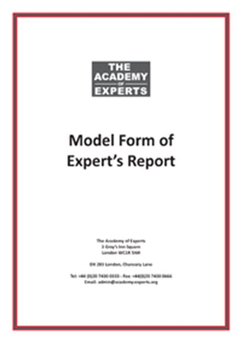 model form  experts report  template  expert