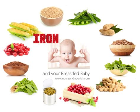 Iron Rich Baby Foods Food