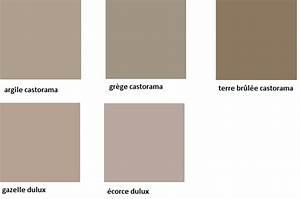 couleur taupe nuancier pantone 20170630174720 tiawukcom With peinture couleur lin nuancier 1 25 melhores ideias sobre nuancier peinture no pinterest