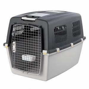 Cage Transport Chien Voiture : gulliver cage de transport pour chien et chat zooplus ~ Medecine-chirurgie-esthetiques.com Avis de Voitures