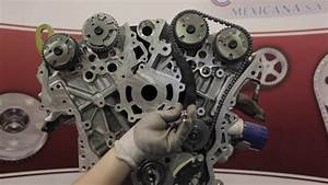 Gm 3 6 Engine Diagram : gm 3 0 3 6l timing replacement cloyes 9 0753s youtube ~ A.2002-acura-tl-radio.info Haus und Dekorationen