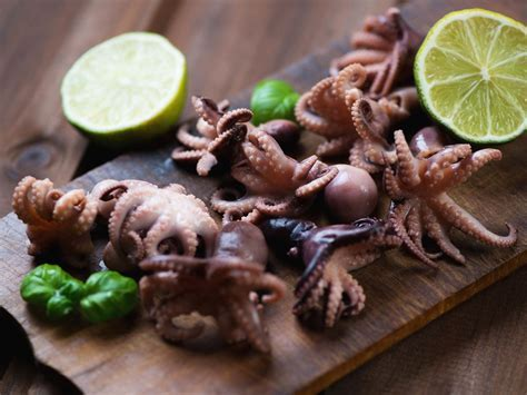 Buy Baby Octopus Online   Frozen   The Fish Society