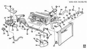 Chevrolet Corvette Hose  Radiator Outlet  Lower