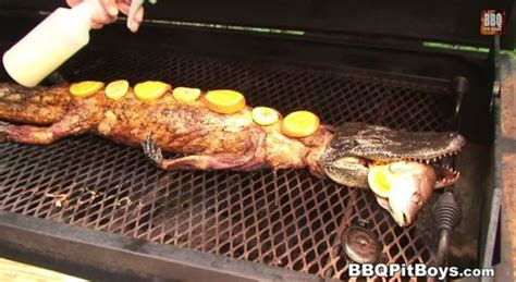aligator cuisine barbecued crawfish stuffed whole alligator neatorama
