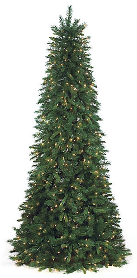 Spokane Valley Christmas Lights Huge Pine Tree