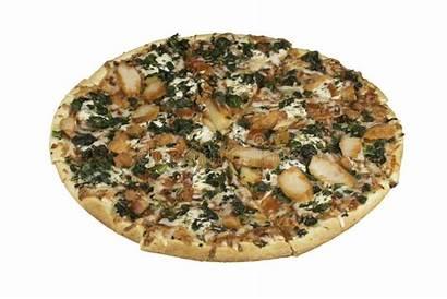 Thin Pizza Crust Combo Italian Oven Pan