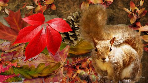 Fall Wallpaper With Animals - fall with animal hd picture wallpapers 4040 amazing
