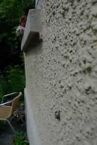 Kellerasseln Im Garten : bin im garten juni 2009 ~ Eleganceandgraceweddings.com Haus und Dekorationen