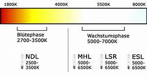 Kelvin Licht Tabelle : beleuchtung beim indoor growing ~ Orissabook.com Haus und Dekorationen