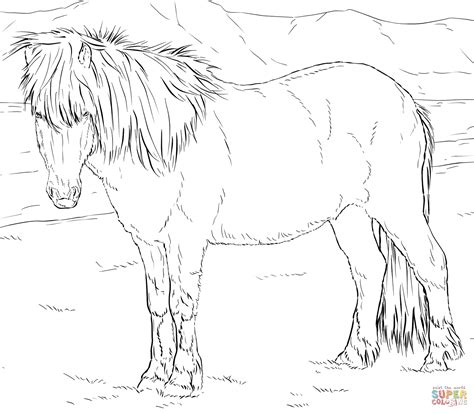 icelandic horse coloring page  printable coloring pages