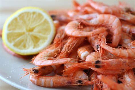 cuisine gambas boiled shrimp recipe gambas cocidas an insider
