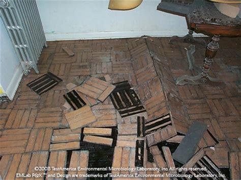 cork flooring jacksonville fl glycol needed wood flooring sales toronto easy clean and