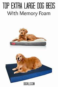 best extra large dog beds ideas on pinterest large dog bed With best dog bed for extra large dogs