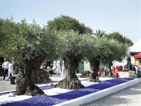 chambre scandinave décoration jardin avec un olivier déco sphair