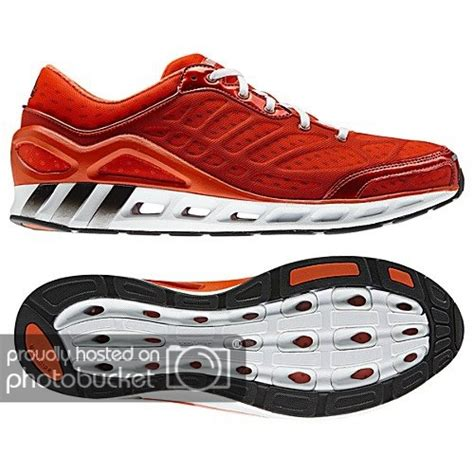 Puma Order Status Want To Sell Brand New And Original Footwear Nike Adidas