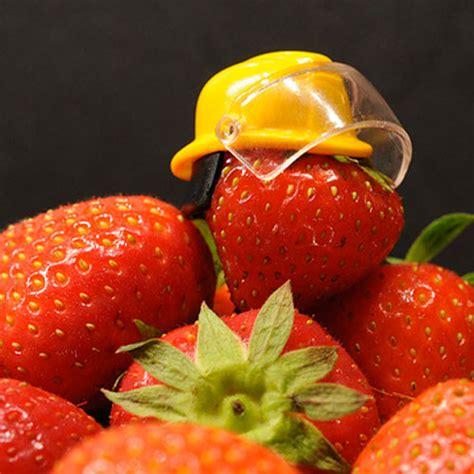 norme haccp cuisine haccp e food management qualichemqualichem
