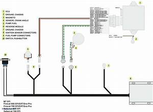 Fan Light Wiring Diagram from tse3.mm.bing.net