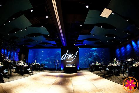 adventure aquarium wedding venue philadelphia partyspace