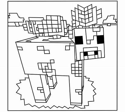 Minecraft Coloring Pages Colouring Printable Cow Sheets