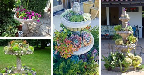 14 Great Ways To Turn Broken Fountains And Bird Baths Into Amazing Planters  The Art In Life