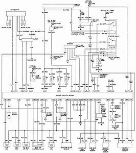 1995 Toyota Tacoma Engine Diagram
