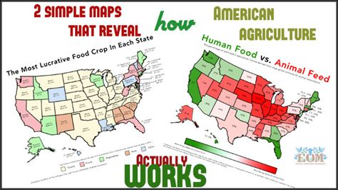 2 Simple Maps That Reveal How American Agriculture Actually Works Flow Chart For Tenses Flowchart To Add 2 Numbers Name And Age On Microsoft Word 2013 Concept Mapping Math Define In Narrative Review