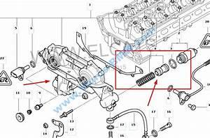 Bmw Vanos Repair Kit  Vanos Repair Kit  Bmw Vanos Seals