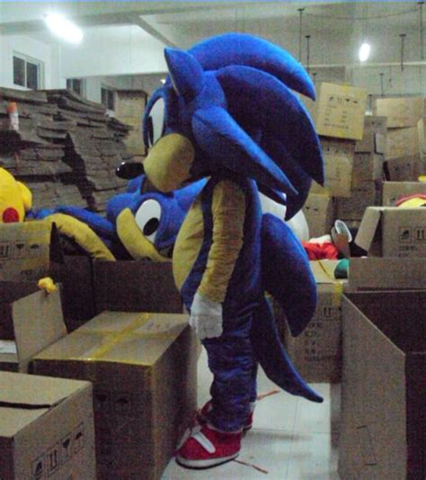 Customized Costume Sonic The Hedgehog Mascot Sonic ...