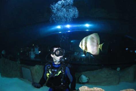 aquarium trocadero tarif