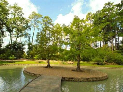 mercer arboretum and botanic gardens bamboo mercer arboretum botanic gardens picture of