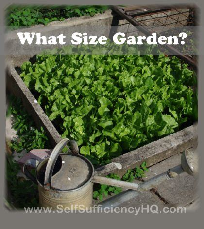 what do i need to start a garden starting a garden and wondering what size garden do i need