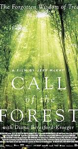 Call Of The Forest  The Forgotten Wisdom Of Trees  2016
