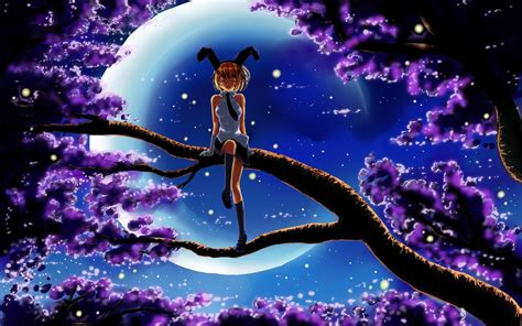 wallpaper night tree branch girl desktop wallpaper